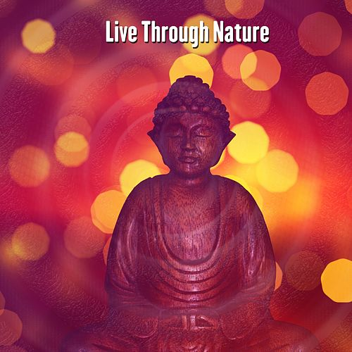 Live Through Nature by Massage Therapy Music
