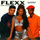 Spider by Flexx
