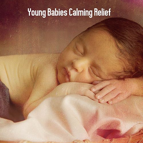 Young Babies Calming Relief by Einstein Baby Lullaby Academy