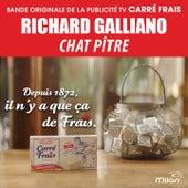 Chat Pitre (Musique de la Publicité 'Carré Frais') von Richard Galliano