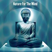 Nature For The Mind by Sounds of Nature Relaxation