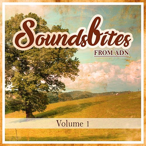Soundsbites From ADN, Vol.1 di Various