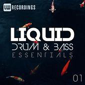 Liquid Drum & Bass Essentials, Vol. 01 by Various Artists