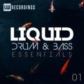 Liquid Drum & Bass Essentials, Vol. 01 von Various Artists
