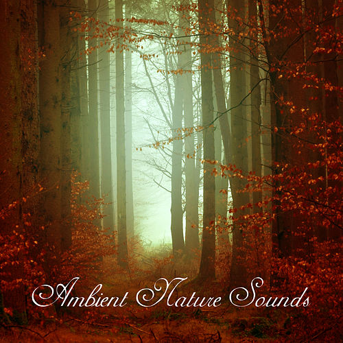 Ambient Nature Sounds – Relaxing Music, Healing Zen, New Age 2017, Rest, Antidote for Stress by Native American Flute