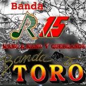 Mano a Mano y Quebrando by Various Artists