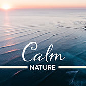 Calm Nature – Healing Music, Deep Sleep, Rest, Peaceful Melodies, Stress Relief, Zen by Sounds of Nature Relaxation