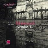 Monteverdi: Madrigali - Cremona Vol. 1 by Various Artists