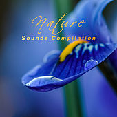 Nature Sounds Compilation – Relaxing Music Therapy, Sounds of Nature, Relaxation & Meditation, Zen by Kundalini: Yoga, Meditation, Relaxation