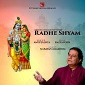 Radhe Shyam by Anup Jalota