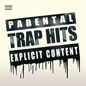 Trap Hits by Various Artists