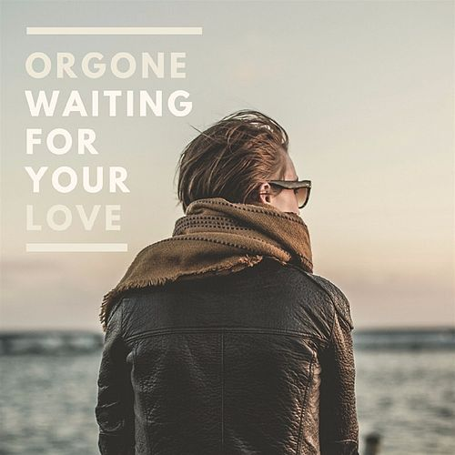 Waiting For Your Love by Orgone