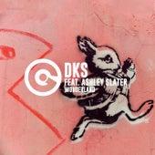 Wonderland by DKS