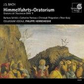 J.S. Bach: Himmelfahrts-Oratorium by Various Artists