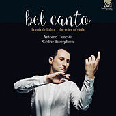 Bel Canto: The Voice of the Viola by Various Artists