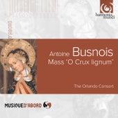Busnois: Mass