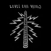 LEVEL LIVE WIRES (10th Anniversary Remaster) by odd nosdam