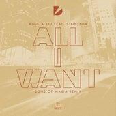 I Want You (Sons Of Maria Remix) von Alok & Liu