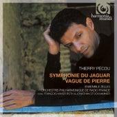 Pécou: Symphonie du jaguar; Vague de Pierre by Various Artists