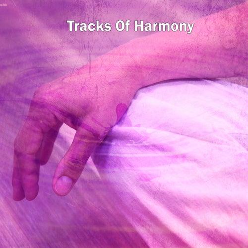 Tracks Of Harmony by Yoga Music