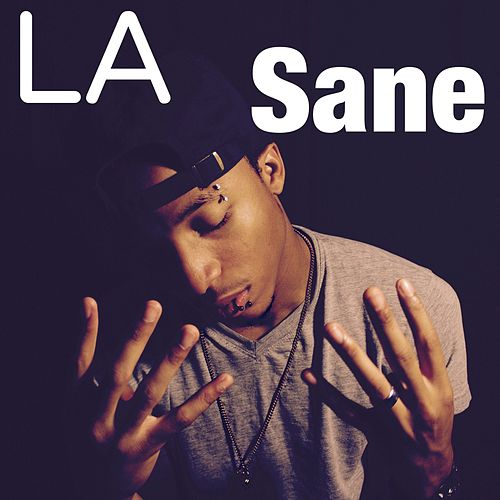 Want a Bag by Sane