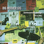 Quintessentially Average (1992 to 1996) by Big Mother Gig