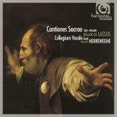 Lassus: Cantiones sacrae sex vocum by Collegium Vocale Gent and Philippe Herreweghe