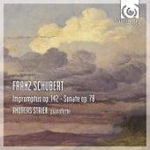Schubert: Impromptus, Op.142, Sonata D894 by Andreas Staier