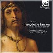 J.S. Bach: Jesu, deine Passion by Various Artists