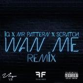 Wan Me (Remix) [feat. Mr.Pattern & Scratch] by IQ