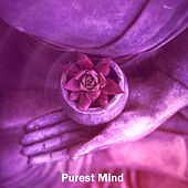 Purest Mind by Zen Music Garden