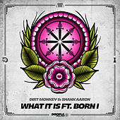 What It Is Ft. Born I by Dirt Monkey