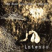 The Slow Cataclysm of Neglect by Intenso