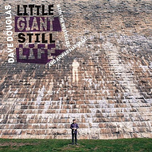 Little Giant Still Life by Dave Douglas