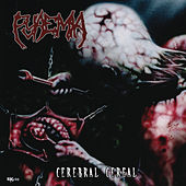Cerebral Cereal by Pyaemia