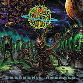 Embryonic Anomaly by Rings of Saturn
