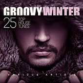 Groovy Winter (25 Top House Tunes) by Various Artists
