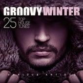 Groovy Winter (25 Top House Tunes) de Various Artists