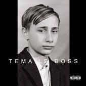 Tema Le Boss by Usky
