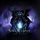 Soul Reaper by Erik Ekholm