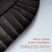 Endless path by Various Artists
