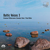 Baltic Voices 3 by Various Artists