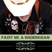 Paint Me a Birmingham by Trevor V Stevens