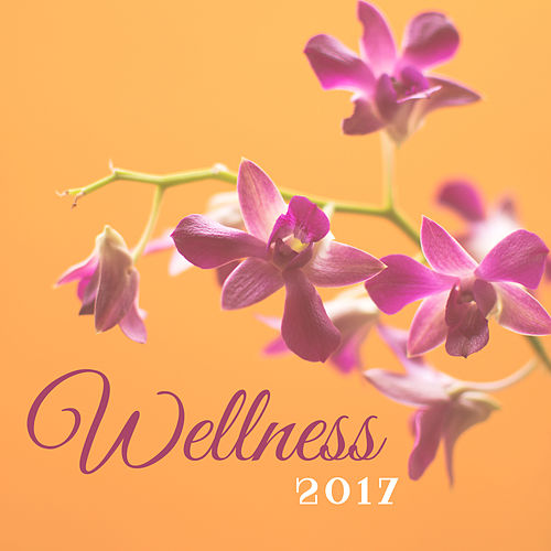 Wellness 2017 – Spa Music, Relaxing Music Therapy, Nature Sounds, Zen, Music to Massage von Wellness