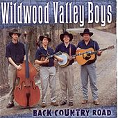 Play & Download Back Country Road by Wildwood Valley Boys | Napster