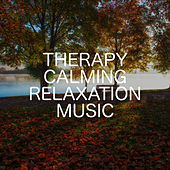 Therapy Calming Relaxation Music by Relaxing Chill Out Music