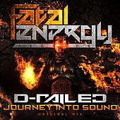 Journey Into Sound by D-Railed
