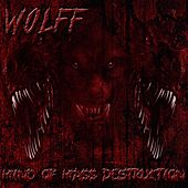 Mind of Mass Destruction by WOLFF
