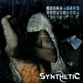 Flight of Icarus by Synthetic