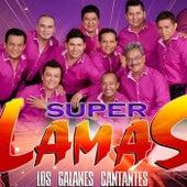 Yo Quiero Chupar1 by Super Lamas